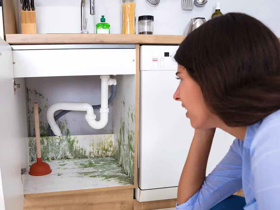 Plumbing Leaks Insurance Mold Damage