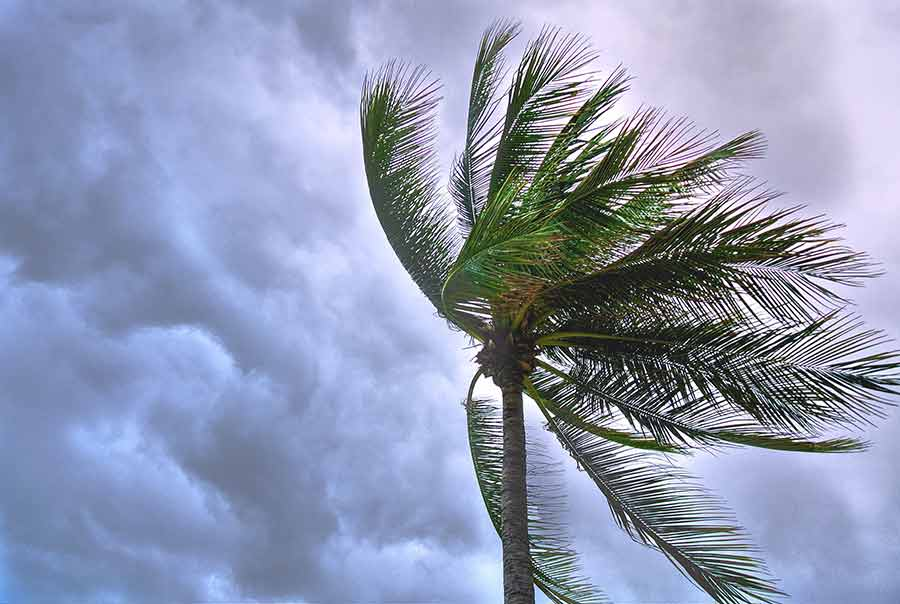 Most Common Home Insurance Claims Wind and Hail Damage